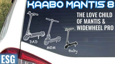 Kaabo Mantis 8 Scooter Review | Lovechild of Widewheel Pro + Mantis
